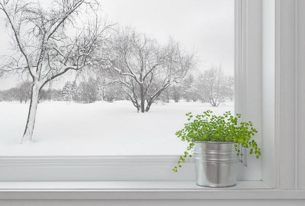 Как правильно выбрать окна ПВХ?
