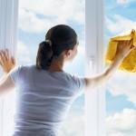 Window_cleaner
